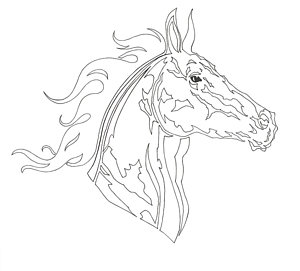300x271 Horse Country Drawings