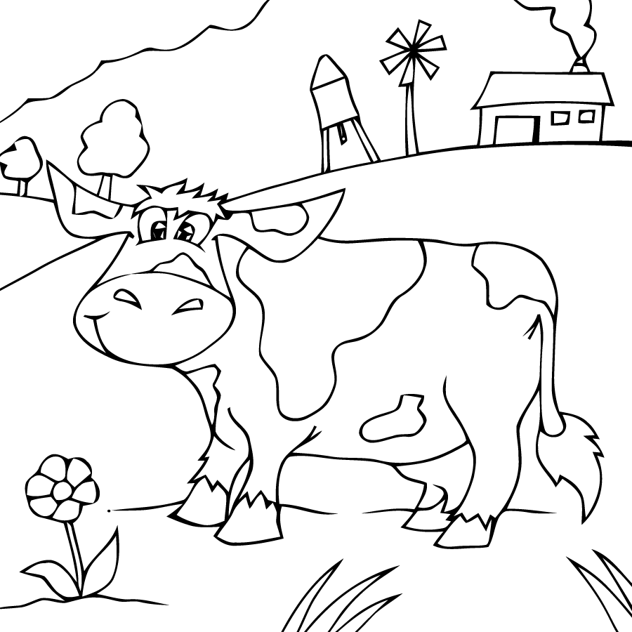 900x900 Countryside