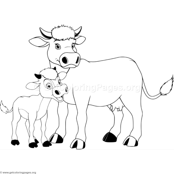 700x700 Mother Cow And Calf Coloring Pages