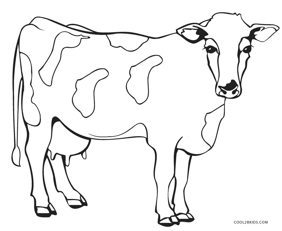 950x778 Cow Coloring Sheets