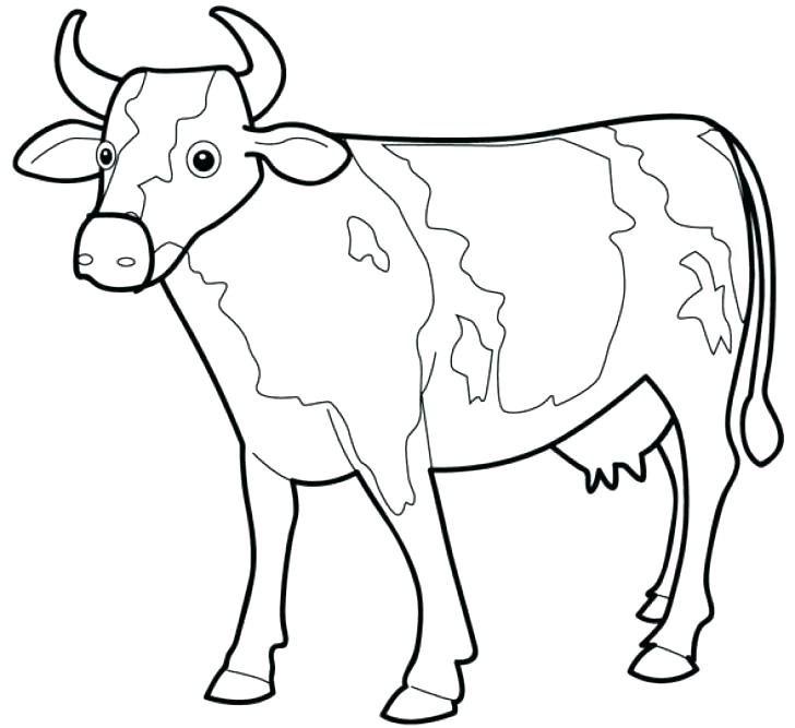 728x667 Best Of Cow Coloring Page Images Cow With Calf Cow With Calf