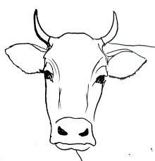 220x229 Cow Head And Face Drawing Rustic Living Cow Head