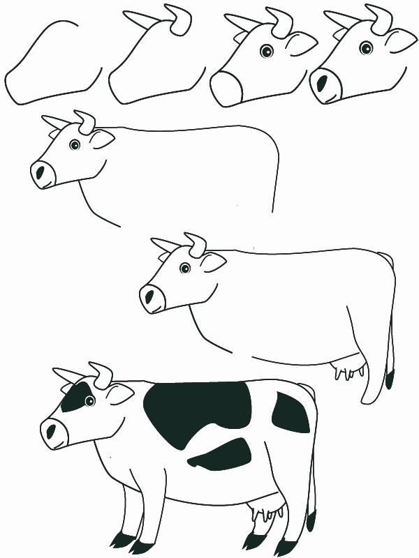 600x800 Drawing Cow