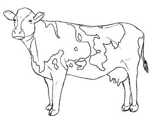 320x240 The Best Cow Drawing Easy Ideas On Choses Faciles