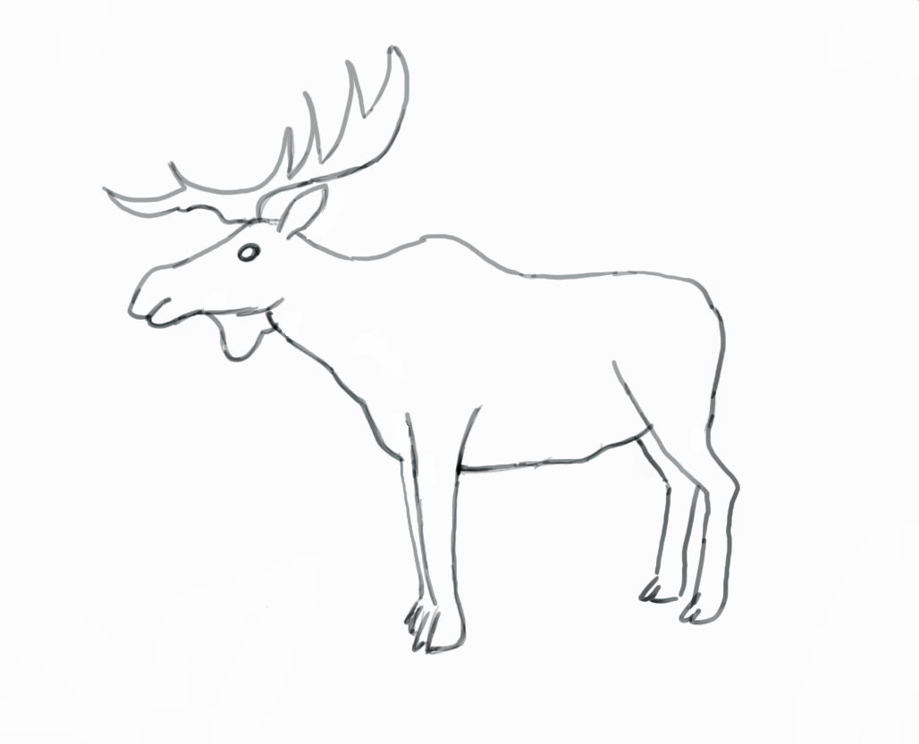 1028x833 How To Draw A Moose