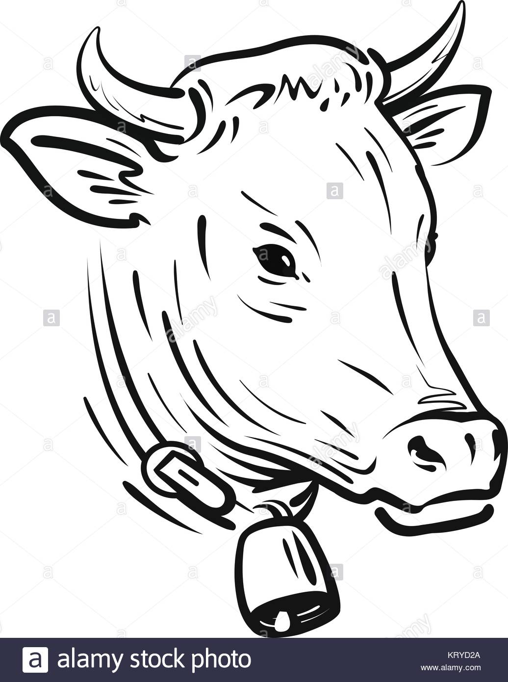 1036x1390 Cow With Bell, Sketch. Farm Animal, Vector Illustration Stock