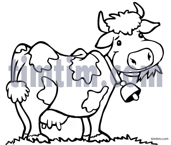 571x485 Free Drawing Of A Cow Bw From The Category Farm Animals Amp Ranch