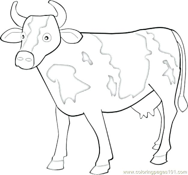 626x584 Coloring Page Cow Cow Coloring Pages Cow Coloring Page Together