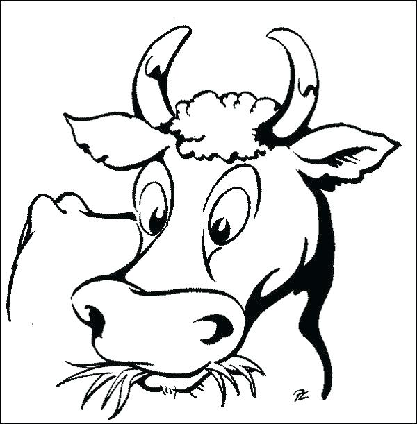 600x611 Coloring Pages Cow Cow Face Coloring Sheet Coloring Page Of A Cow