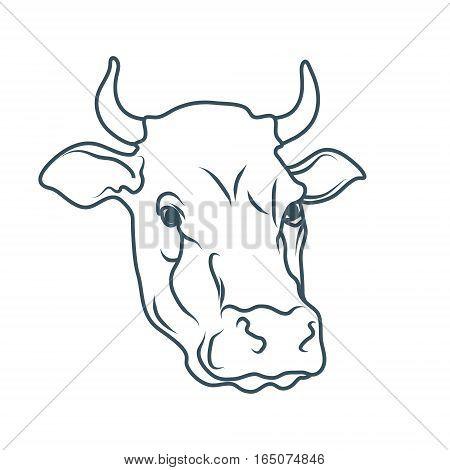450x470 Cow Images, Illustrations, Vectors