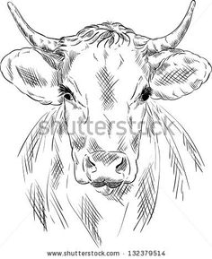 236x289 Image Result For Cow Head Drawing Doodle Art Cow