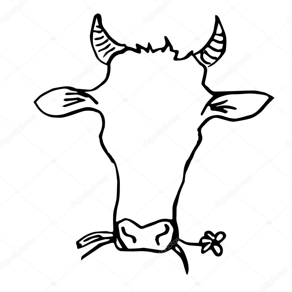 1024x1024 Cow Head Hand Drawing Stock Vector Vectorielle