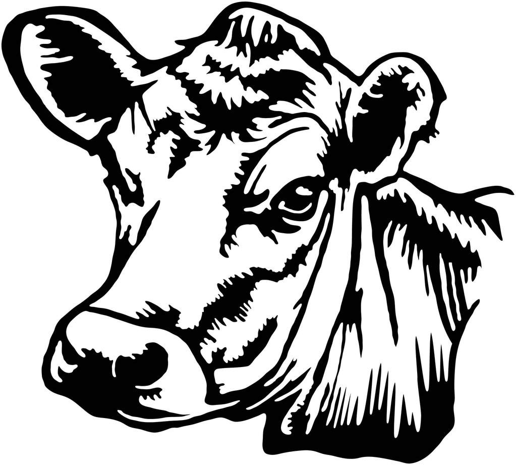 Cow Head Drawing at GetDrawings.com | Free for personal use Cow Head ...