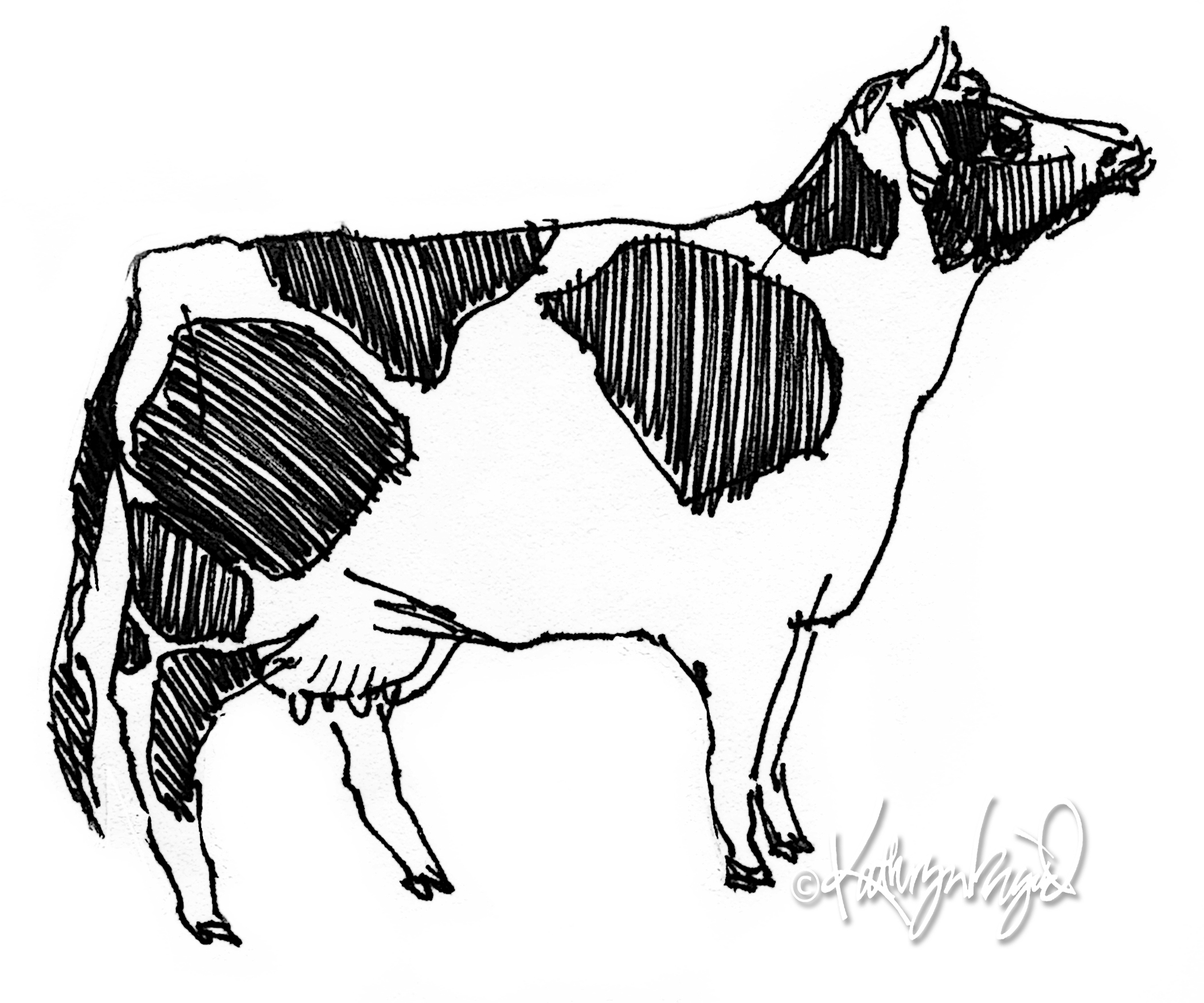 2100x1750dult Drawing Cow Drawing Cowboy Lawyer. Drawing