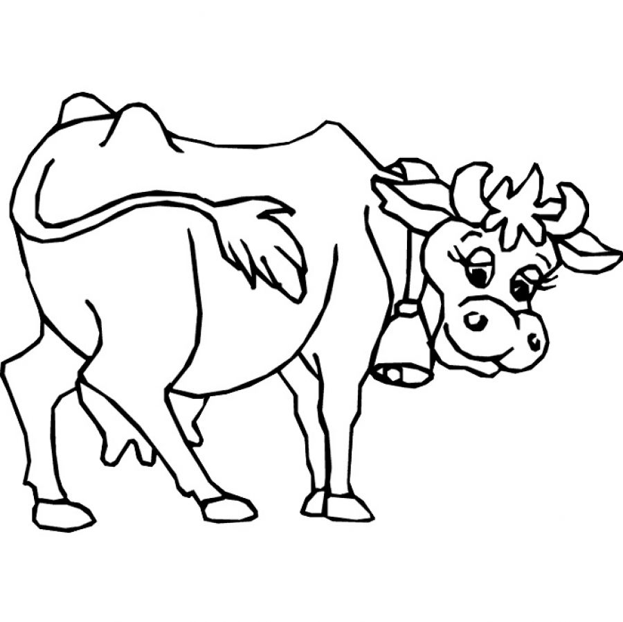 Cow Outline Drawing at GetDrawings com | Free for personal