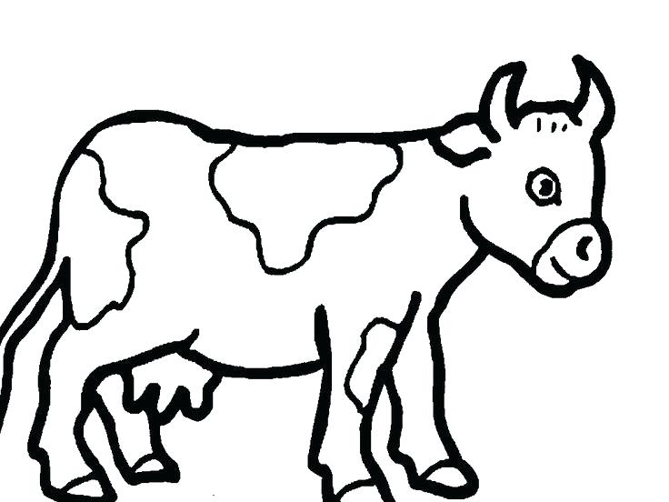 736x552 Coloring Pictures Of Cows Cow Coloring Pages Coloring Book
