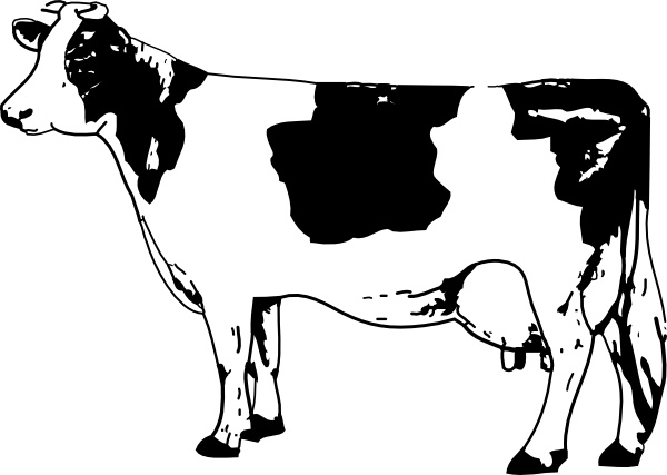 600x427 Cow Clip Art Free Vector In Open Office Drawing Svg ( Svg