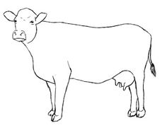 236x177 How To Draw A Cow Cow, Drawings And Paintings