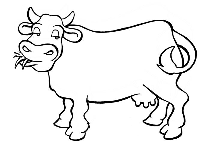 Cow Simple Drawing