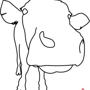300x300 Adult Cow Face Drawing Cow Face Cartoon Drawings. Cow Face Drawing