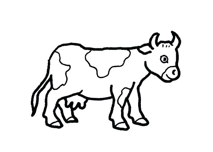 700x500 Coloring Pictures Cows Coloring Cow Coloring Book Pictures