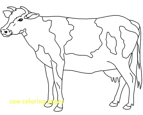 600x481 Cow Coloring Book Also Cow Coloring Pages 48
