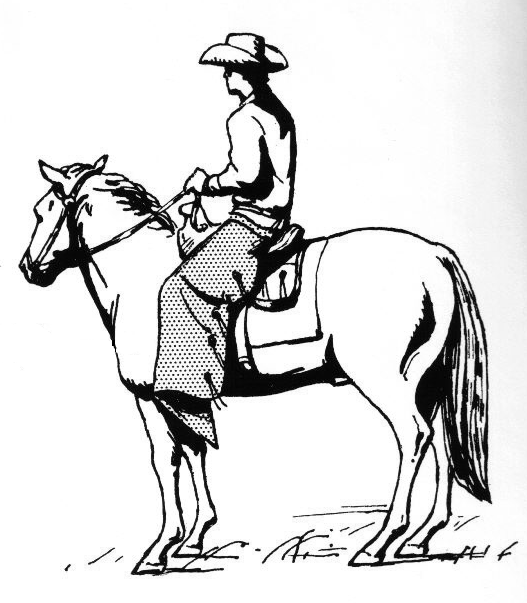 527x603 Filecowboy On A Horse Wearing Chaps 002.png