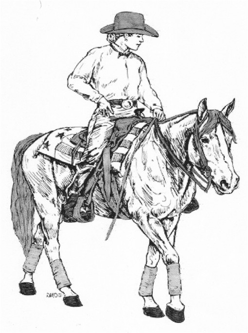 Cowboy On Horse Drawing