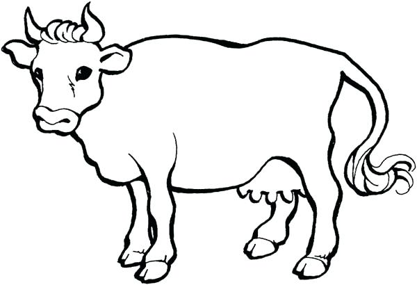 600x410 Coloring Pages Cow Cow Coloring Pages Pages Coloring Pages Online