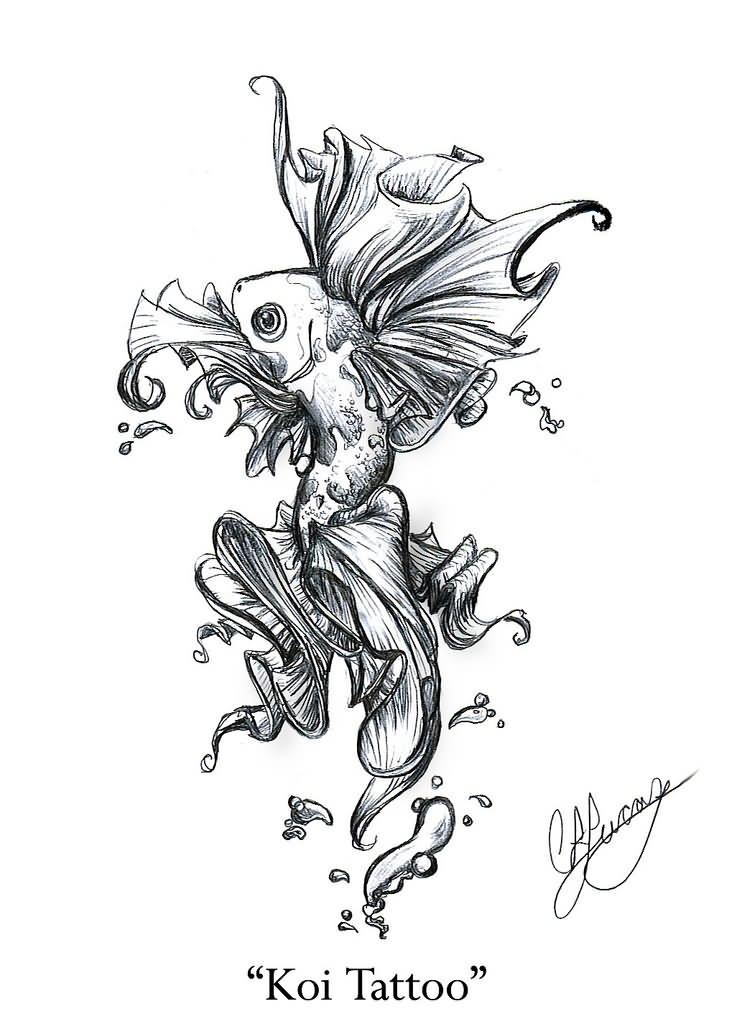 Coy Fish Drawing