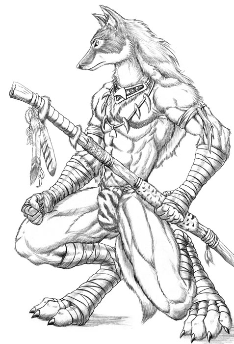 477x700 Coyote Scout By Wolflsi