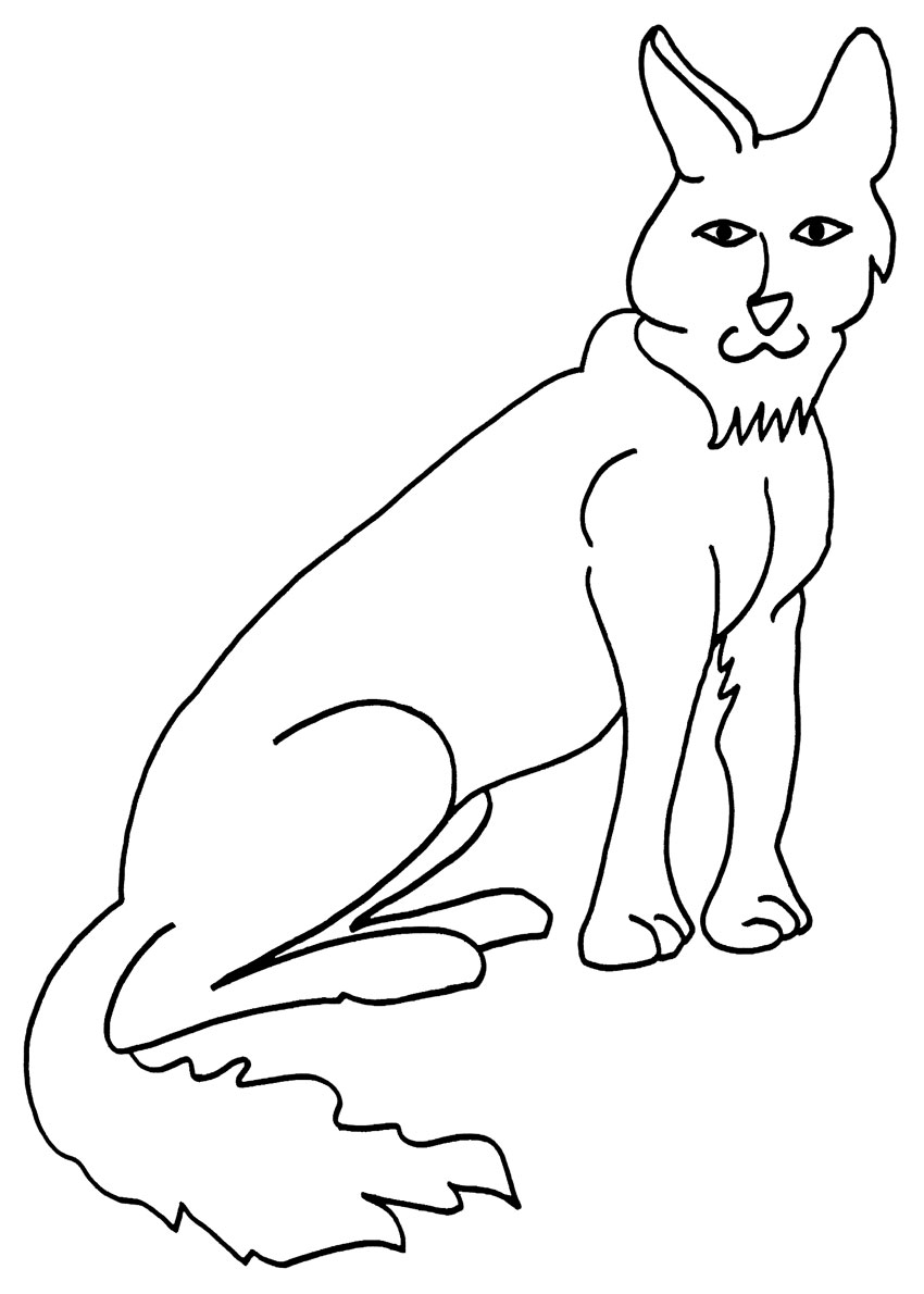 850x1190 Printable Coyote Coloring Pages For Kids Cool2bkids