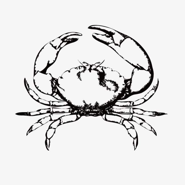 650x650 Hand Painted Crab, Sketch, Vector, Animal Png And Vector For Free