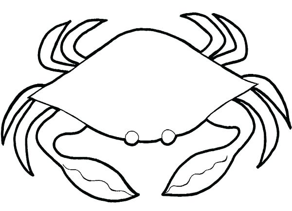 600x434 Hermit Crab Coloring Page Pages