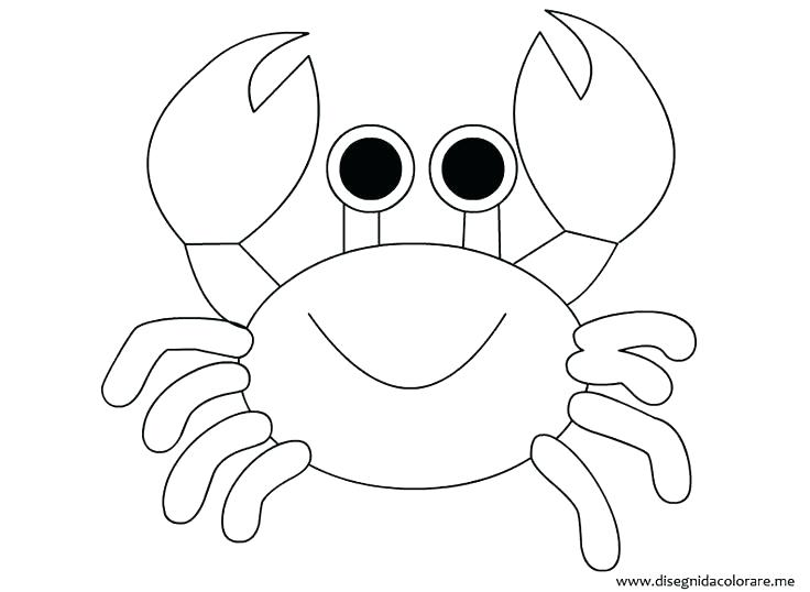 736x538 Crab Coloring Page Outline Pages Sweet Design On Hermit Shell
