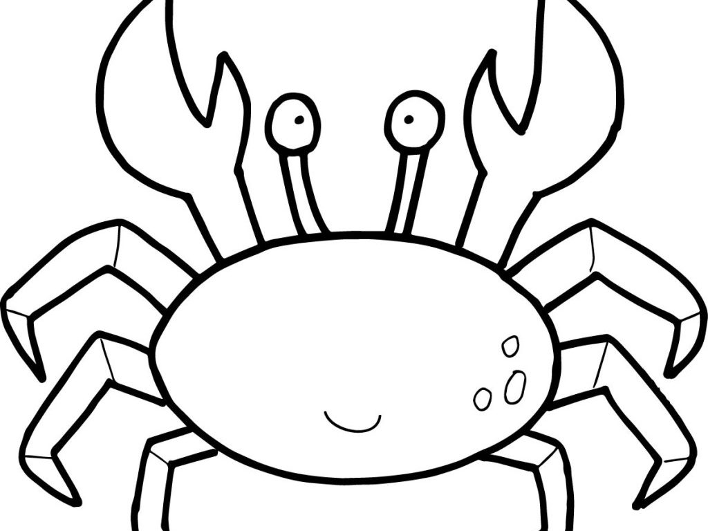 1024x768 Hermit Crab Coloring Pages