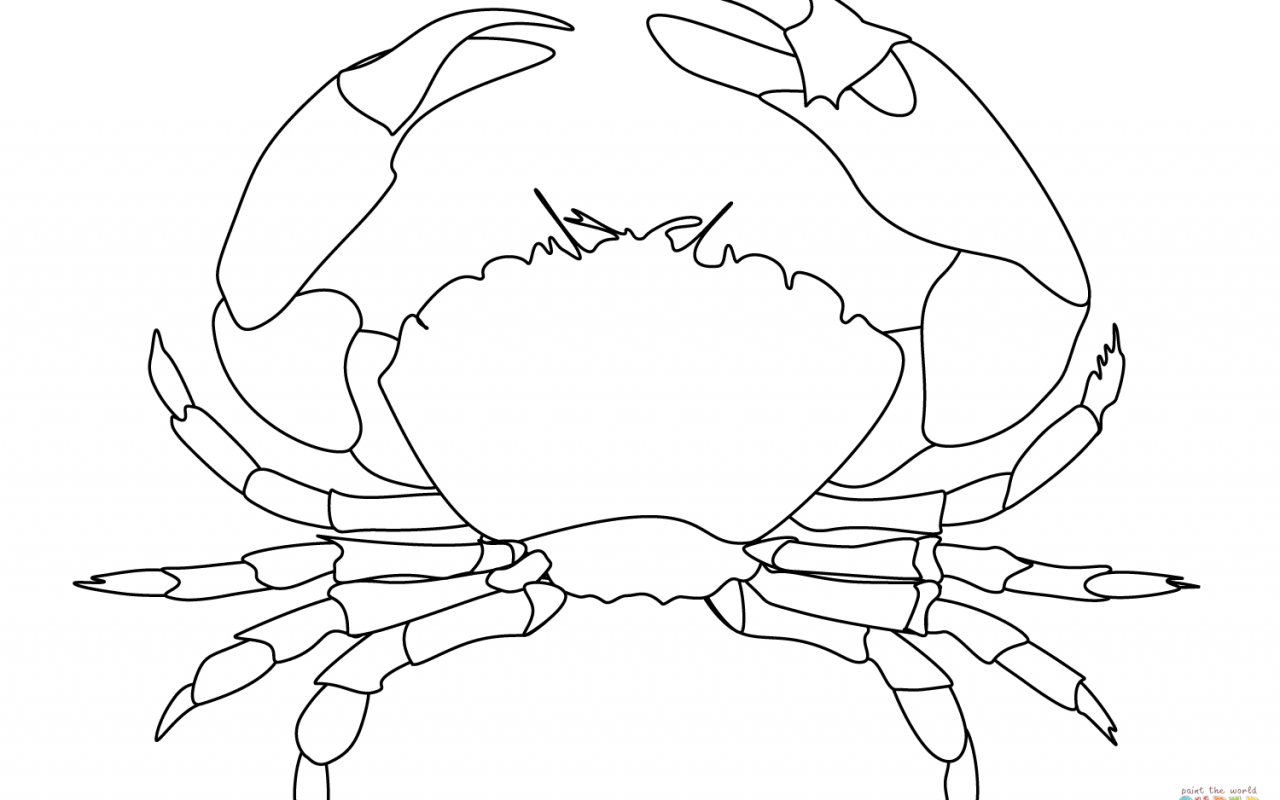 1280x800 Image Crab Coloring Page With Additional Undersea Printable