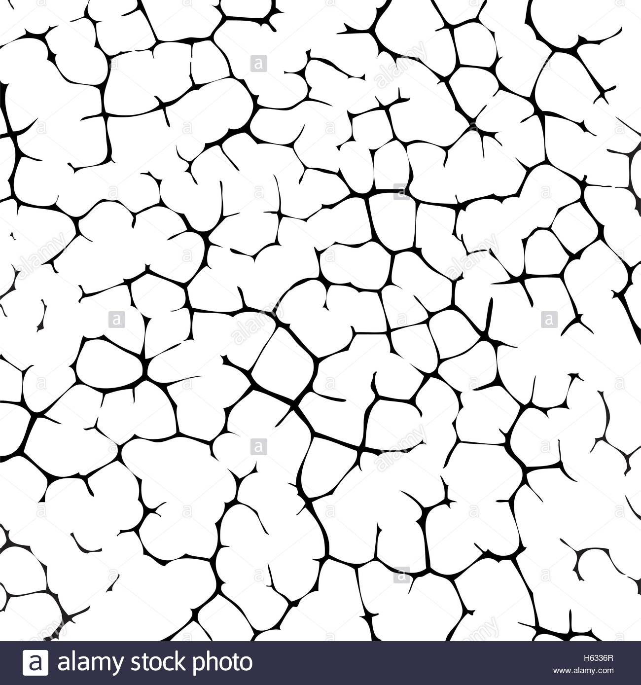 1300x1389 Vector Black And White Cracked Texture Of Wall Or Earth Stock