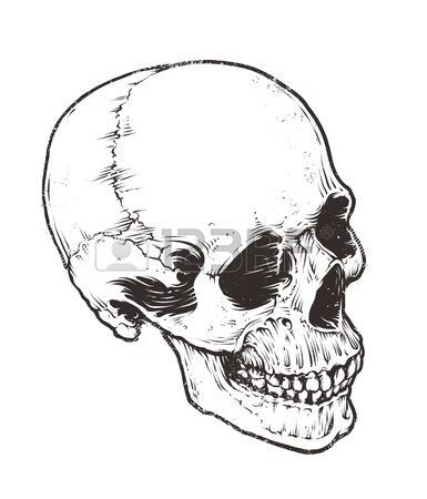 385x450 Cracked Skull Stock Photos. Royalty Free Business Images