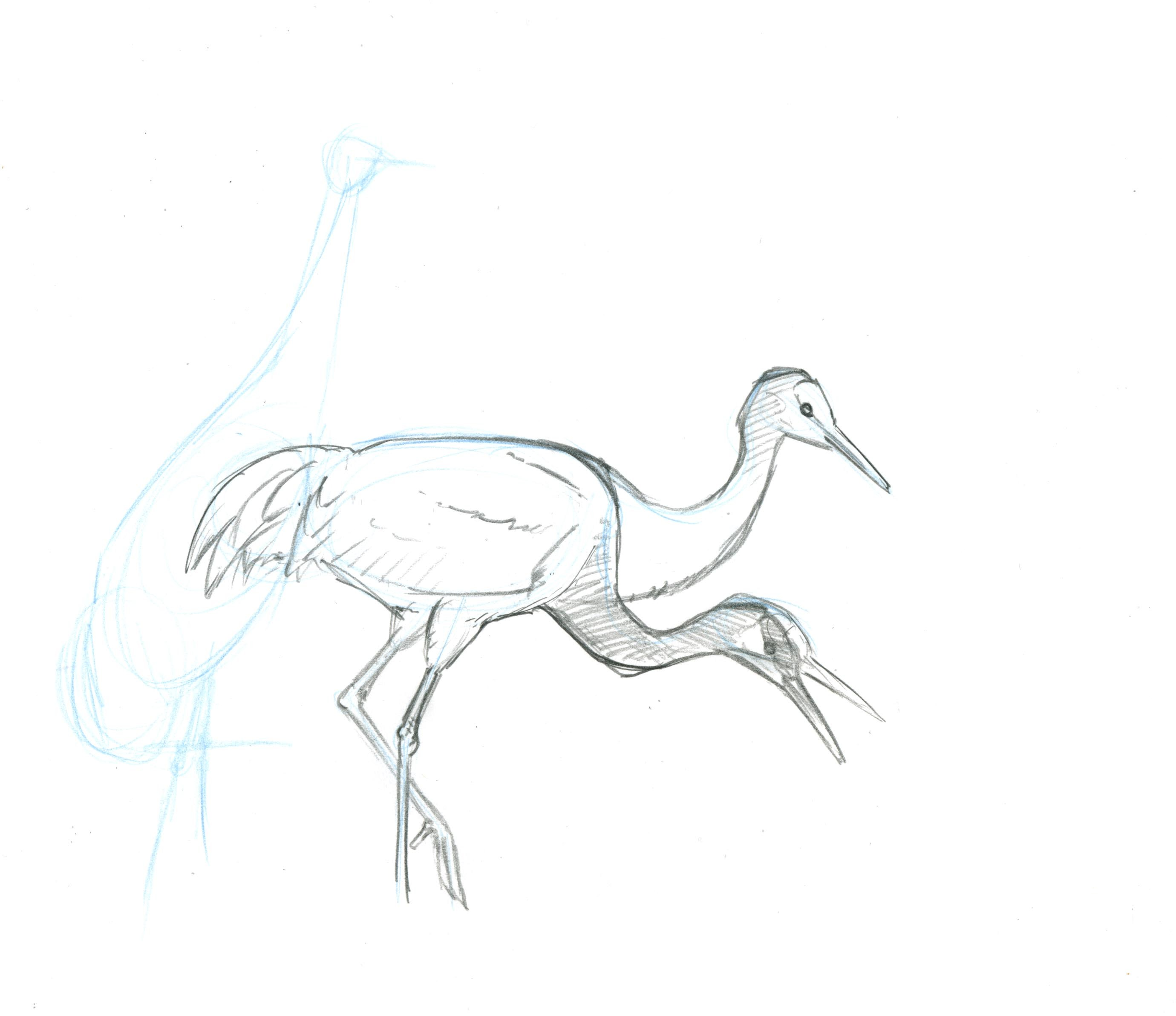 2760x2383 How To Paint A Sandhill Crane Landscape, Step By Step
