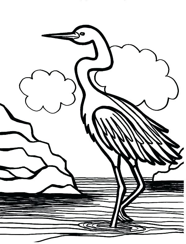 600x787 Swamp Coloring Page Crane Bird Is Swamp Bird Coloring Pages Swamp