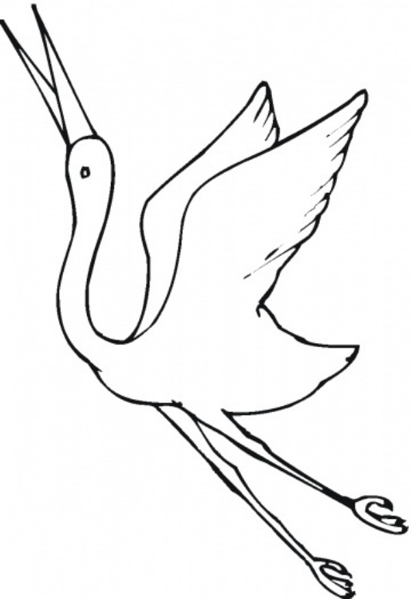 600x875 Beautiful Crane Bird Coloring Pages For Kids Animal Vista Yooall