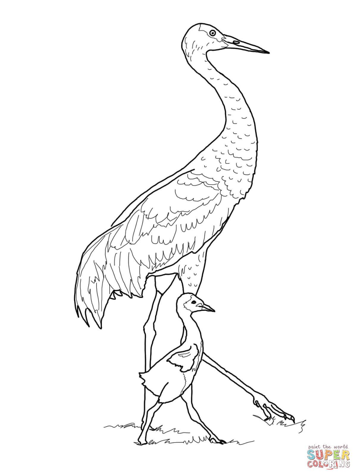 1200x1600 Sandhill Crane With Baby Coloring Page Free Printable Coloring Pages