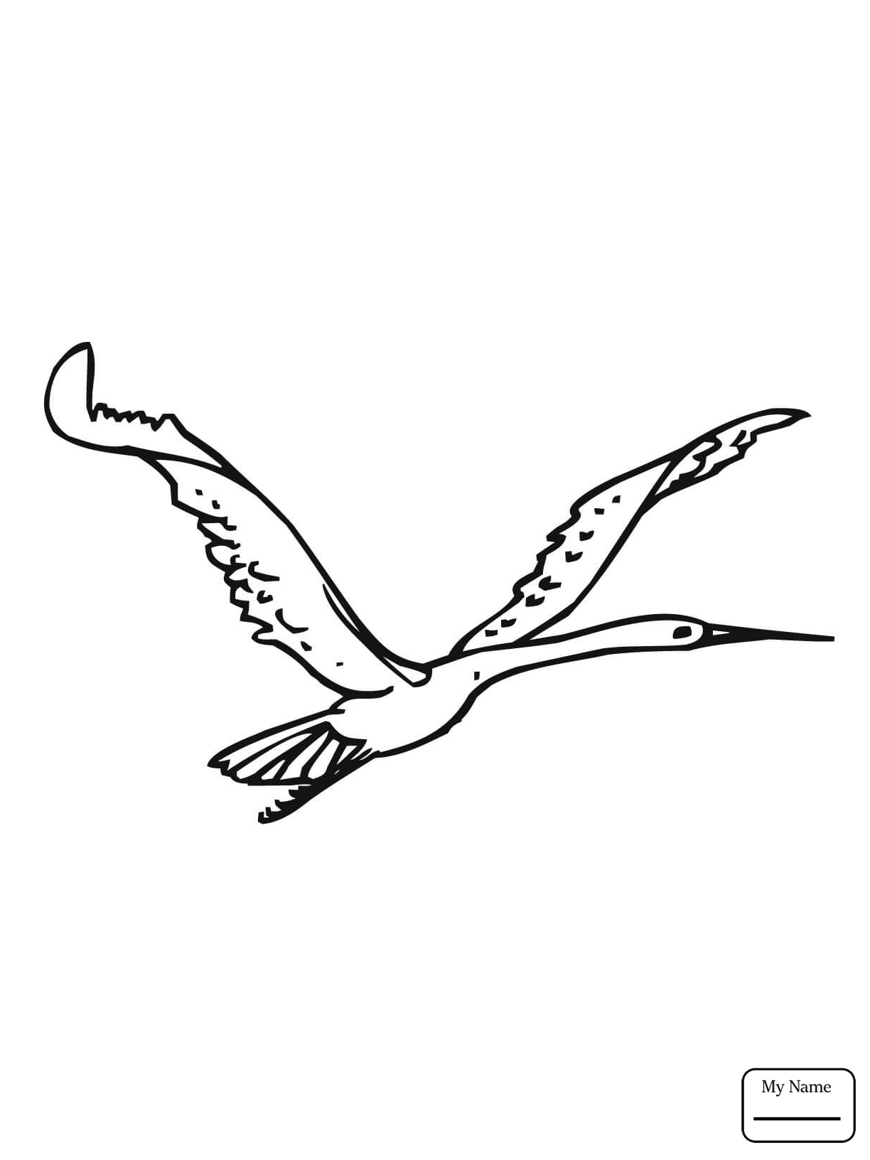 1224x1632 Coloring Pages Birds Cranes Crane On The Lake Mycoloring7