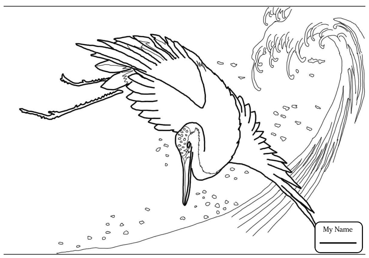 1224x857 Coloring Pages For Kids Birds Cranes Crane In The Pond