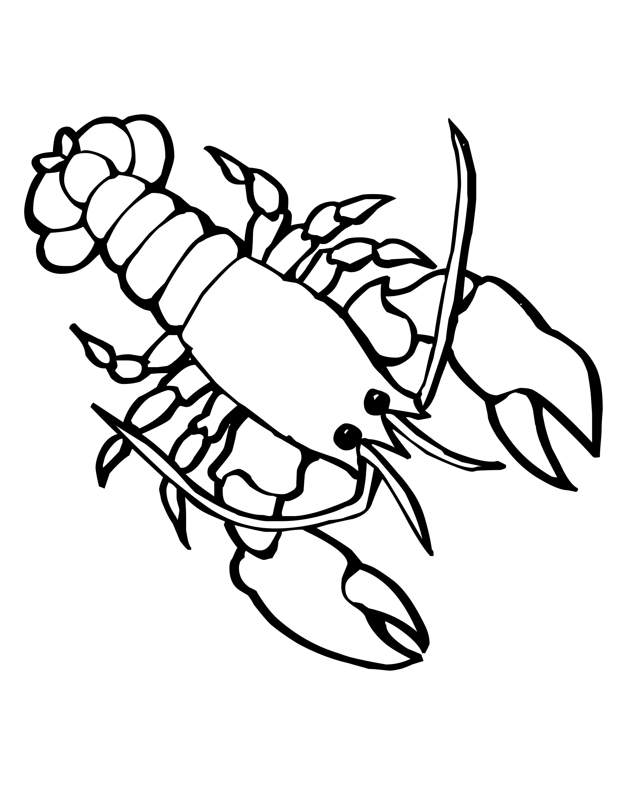Crayfish Drawing
