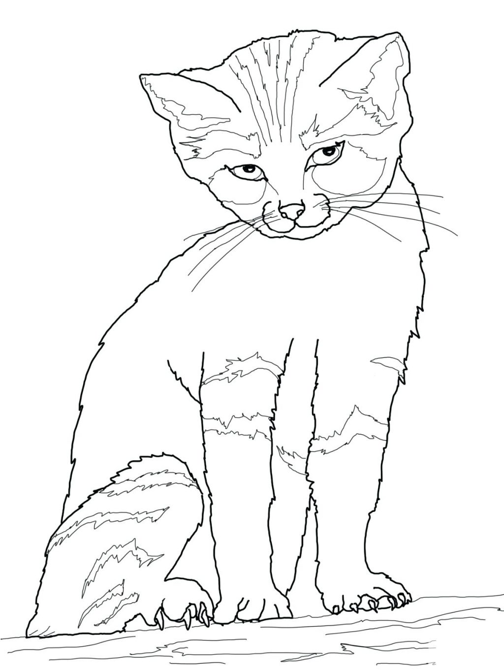 1024x1365 Coloring Page Coloring Pages Cat. Coloring Book Pages Cats. Free