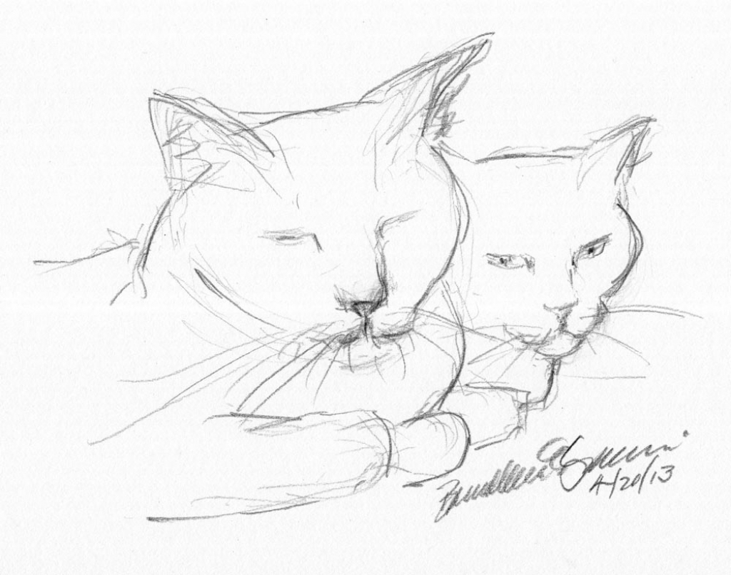 1024x806 Pencil Sketches Of Cats Daily Sketch Watching Me The Creative Cat