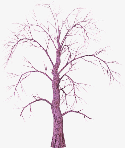502x592 Creative Trees, Branches, Trees, Plant Png Image For Free Download