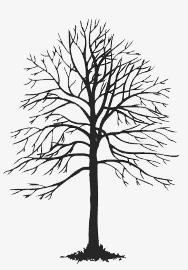 650x931 Trees Illustration, Ppt, Free Creative Pull Png, Dead Trees Png